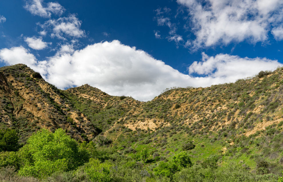 Canyon in Newhall CA